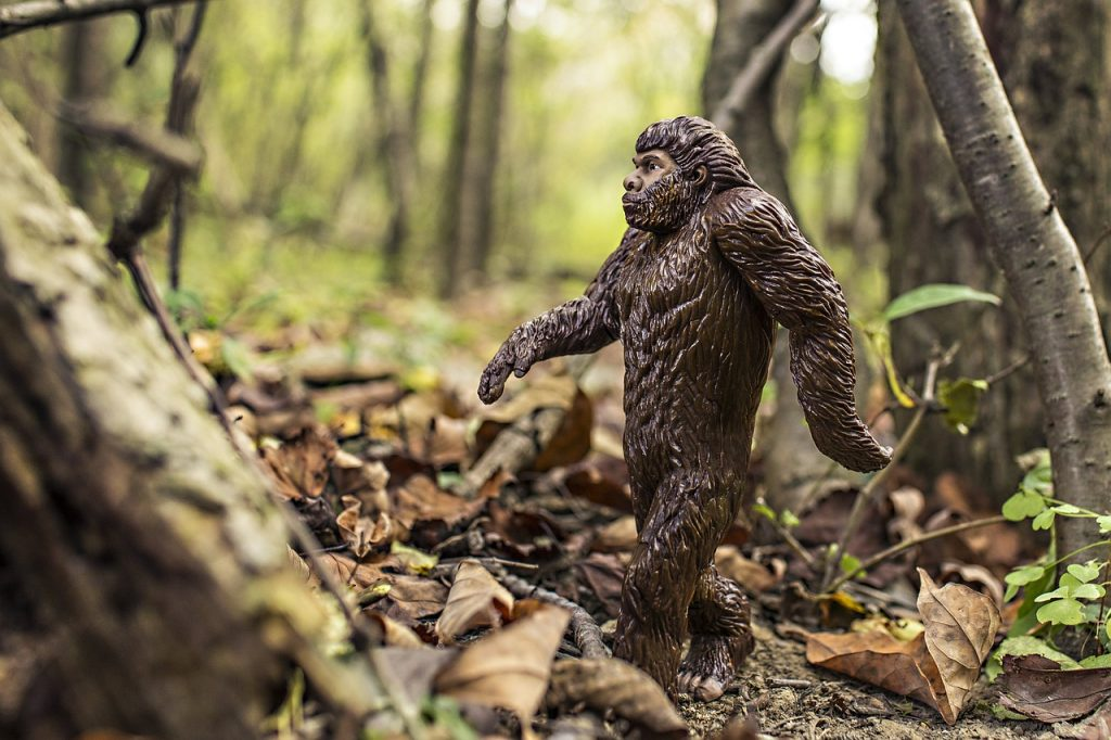 Image of bigfoot